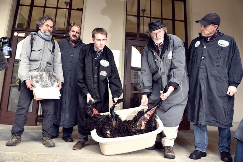 Sebastian Ostmann (links) trägt ein gerissenes Schaf vor das Umweltministerium